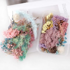 Box suchých květin